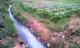 ابتدائية الحسيمة تدين فلاحا استعمل المياه العادمة لسقي ألمزروعات