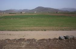 فلاحو منطقة الريف يستبشرون خيرا بعد تساقطات مطرية استثنائية