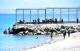 ازيد من 230 مغربيا بينهم نساء واطفال يدخلون الى سبتة المحتلة سباحة