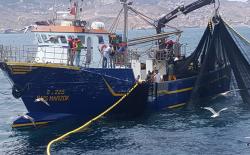 مهنيو الصيد بالحسيمة يطالبون بتعميم الشباك السينية على جميع المراكب