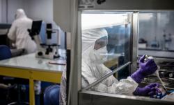 وزارة الصحة: شفاء ثاني حالة مصابة بفيروس كورونا