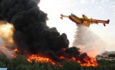 حريق الغابة الدبلوماسية بطنجة اتى على 36 هكتار من الاشجار
