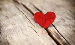 رأي : عيد الحب بين المجاملة و الحقيقة