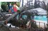 نجاة أسرة باساكن من الموت اثر سقوط شجرة كبيرة على مسكنها