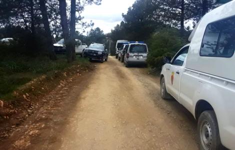 الحسيمة.. قطع العشرات من أشجار الصنوبر باساكن يستنفر السلطات