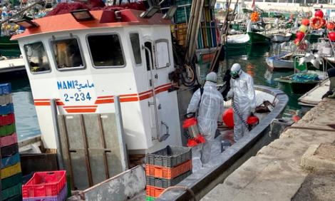 تدابير احترازية بميناء الحسيمة