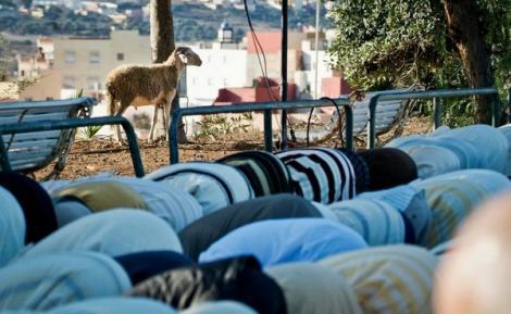 مسلمو مليلية يلوحون بالاحتجاجات ضد منع دخول الأضاحي