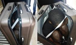اعتقال مغربية حاولت تهريب مهاجر سري داخل حقيبة ملابس