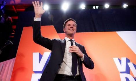 الحزب الحاكم يفوز في الانتخابات الهولندية وفشل لليمين المتطرف