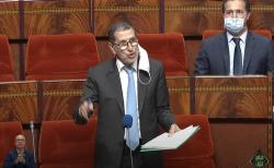 سعد الدين العثماني يثير غضب النشطاء الأمازيغ