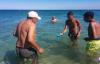 """ظهور قناديل البحر """"يُفسد"""" الاصطياف بعدد من شواطئ الحسيمة"""