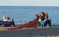 الدريوش.. اطلاق مشروع لاحداث نقطة لتفريغ السمك بجماعة اتروكوت