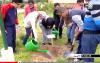 مبادرة غرس 2400 شجرة بمدارس الحسيمة
