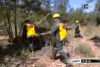 تدابير لحماية غابات الحسيمة من الحرائق
