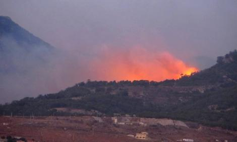 حريق يأتي على غابة تأوي مهاجرين ضواحي الناظور