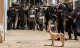 """معهد """"مونتان"""" الفرنسي يَنتقد تعامل السلطات المغربية مع حراك الريف"""