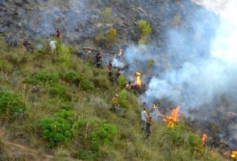 """السيطرة على حريق """"المنتزه الوطني"""" بالحسيمة"""