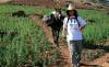 """""""سياحة الحشيش"""" قطاع آخذ في الازدهار بشمال المغرب رغم التكتم الرسمي"""