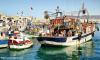 وكالة فرانس برس : الدلفين الاسود عدو جديد للصيادين في الحسيمة