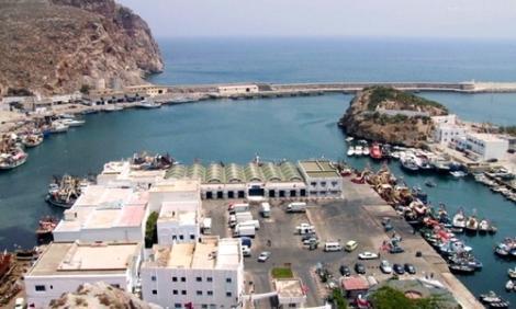 شبح اندثار الموارد البحرية يهدد ميناء الحسيمة