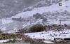 تساقط الثلوج بأعالي الريف ومعاناة التلاميذ