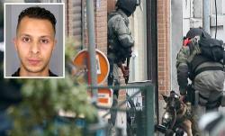المخابرات البلجيكية متهمة بالتكتم على تطرف الريفي صلاح عبد السلام