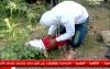 تمثيل جريمة اغتصاب وقتل الطفلة سليمة
