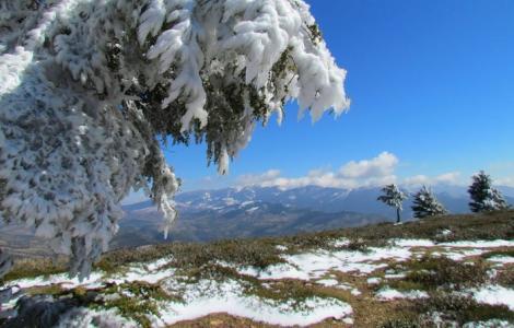مديرية الأرصاد الجوية تتوقع تساقطات مطرية وثلجية جديدة بالريف
