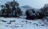 الأرصاد الجوية تتوقع تساقطات ثلجية بمرتفعات الريف غداً الأحد